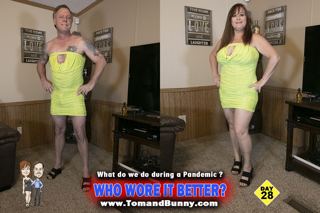 Day 28 - What do we do during a Pandemic - Who wore it better 2